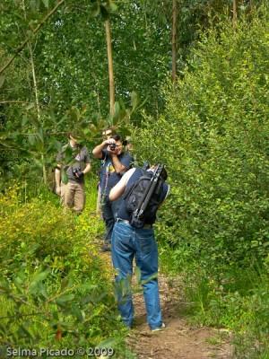 raid Fotográfico Margens da Pateira 2009.06.30