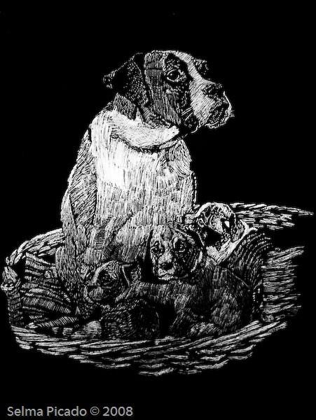 Cadela e ninhada